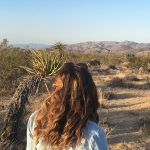 A Guide to Joshua Tree National Park
