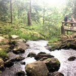 How To Explore Buttermilk Falls: The Tallest Waterfall in New Jersey
