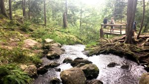 Buttermilk Falls, New Jersey: How I Spent the 1st Day of Autumn