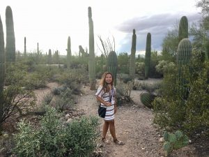 Visiting Saguaro National Park in Tucson, Arizona: Find Millions of Cacti