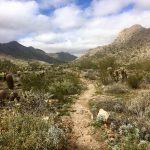 The Ultimate Guide to Solo Hiking: The Benefits and The Do's and Don'ts