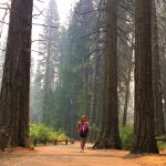 7 Reasons To Visit A National Park