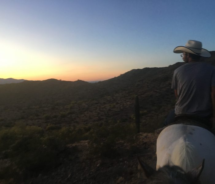 What To Expect On Your First Time Horseback Riding Experience