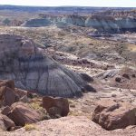 The Ultimate Guide To Petrified Forest National Park