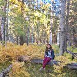 Hiking Aspen Corner in Flagstaff: The Perfect Autumn Escape