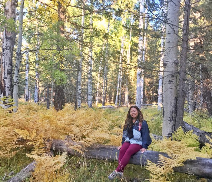 Hiking Aspen Corner in Flagstaff: The Perfect Autumn Escape