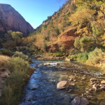 How To Visit Zion National Park In One Day