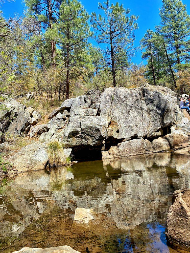 A close up shot of Bannon Creek